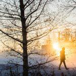 Avis lampe solaire à detection de mouvement 2019